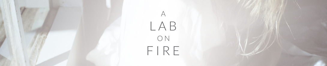 A Lab On Fire banner