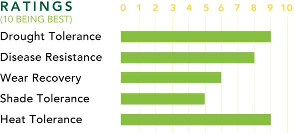 Bolero™ Rating Chart