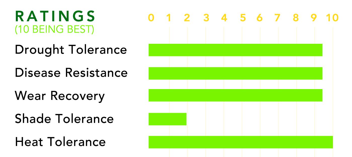 Tifway 419 & Tifway II Rating Chart